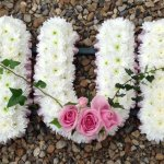 ####MUM white chrysanthemums and ivy joined rose posies (all colours) ribbon edging £90