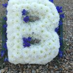 ##### standard chrysanthemum based letter £25
